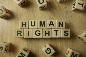 human rights lawyer toronto